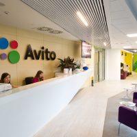 Продвижение Avito