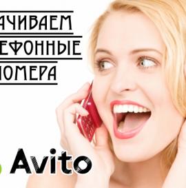 Скачиваем телефоны из объявлений Авито
