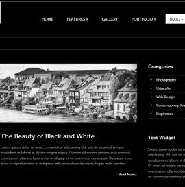 Создание портфолио или блога за 24 часа