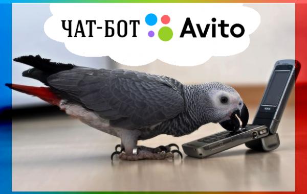 Чат-Бот Кеша занимается рассылкой по Авито
